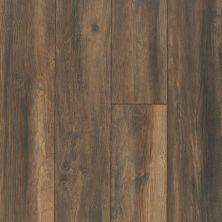 Shaw Floors SFA Ellenburg Hillside Taupe 07032_SA597