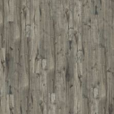 Shaw Floors SFA Harbour Towne Plus Weathered Hickory 05011_SA598