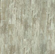 Shaw Floors SFA Destiny Plank Medalist 00130_SA606