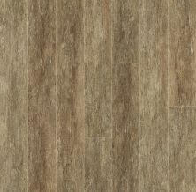 Shaw Floors SFA Destiny Plank Strong Finish 00718_SA606
