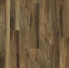 Shaw Floors SFA Destiny Plank Superstar 00776_SA606