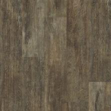 Shaw Floors SFA Mantua Plank Genoa 00773_SA609