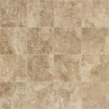 Shaw Floors Vinyl Residential Provincial Bloomington 00209_SA610