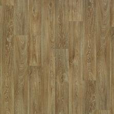 Shaw Floors Resilient Residential Nebraska 00202_SA612