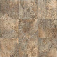 Shaw Floors Resilient Residential Casper 00500_SA612
