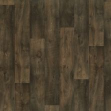 Shaw Floors Vinyl Residential Chisholm Texas 00700_SA612