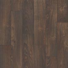 Shaw Floors Resilient Residential Chisholm Sheridan 00777_SA612