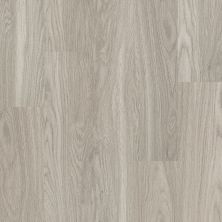 Shaw Floors SFA Majestic 00520_SA615