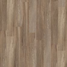 Shaw Floors SFA Walden Ridge Hemlock Branch 00574_SA615