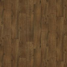 Shaw Floors Vinyl Residential Archipelago 12 Virginia 00203_SA622