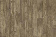 Shaw Floors Resilient Residential Adirondack 12c Gresham 00116_SA623