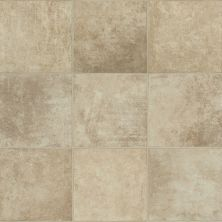 Shaw Floors Resilient Residential Hercules Crete 00131_SA624