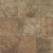Shaw Floors Resilient Residential Hercules Helicon 00805_SA624