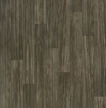 Shaw Floors Vinyl Residential Ares Thebes 00531_SA625