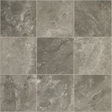 Shaw Floors Resilient Residential Artemis Pleuron 00552_SA626