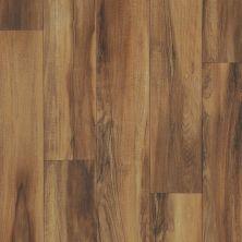 Shaw Floors Resilient Residential Doris 00604_SA626