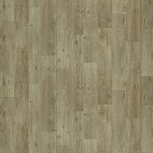 Shaw Floors Vinyl Residential City Park Boardwalk 00144_SA627
