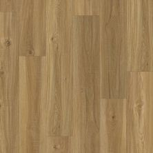 Shaw Floors SFA Mellow Oak 00109_SA629