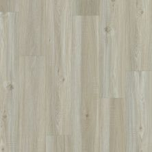 Shaw Floors SFA Cornerstone Plank Washed Oak 00509_SA629