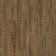Shaw Floors SFA Cornerstone Plank Vintage Oak 00723_SA629