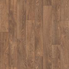 Shaw Floors SFA Provencial 13'2″ Madison 00202_SA631