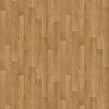 Shaw Floors Vinyl Residential Vallejo Jenner 00217_SA632