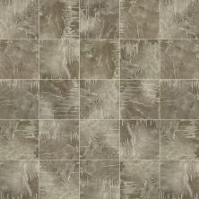 Shaw Floors SFA Safari Tile Paradise 00560_SA633