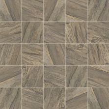 Shaw Floors SFA Safari Tile Lodge 00796_SA633