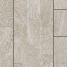 Shaw Floors SFA Quartz 12×24 Greige 00250_SA937