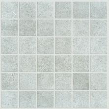 Shaw Floors SFA Exposure Mosaic Core 00515_SA949