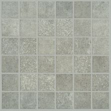 Shaw Floors SFA Exposure Mosaic Element 00550_SA949