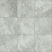 Shaw Floors SFA Form 13×13 Evolve 00500_SA979