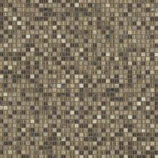 Shaw Floors SFA Marvelous Mix 5/8 Mosaic Cappuccino 00700_SA986