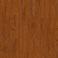 Shaw Floors Versalock Laminate Avondale 00663_SL092