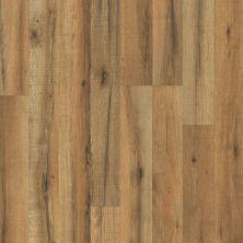 Shaw Floors Versalock Laminate Classic Designs Orchard Oak 06003_SL110