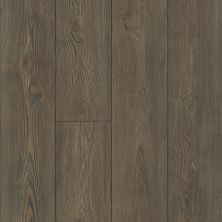 Shaw Floors Versalock Laminate Anthem Plus East Vrgina Bls 07714_SL425