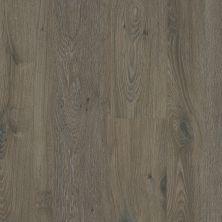 Shaw Floors Versalock Laminate Simplicity Plus Ashlee Gray 05009_SL442