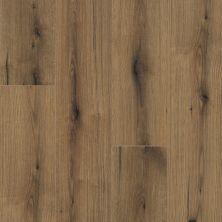 Shaw Floors Versalock Laminate Monarch Plus Pioneer 08009_SL444