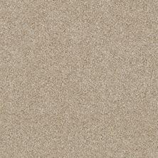 Shaw Floors Cause II Linen 00100_SM006