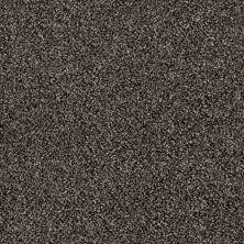 Shaw Floors Cause II Boulder 00504_SM006