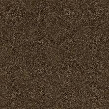 Shaw Floors Cause III Sedona 00702_SM007