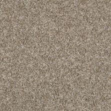 Shaw Floors Compound Sugar Cookie 00101_SM010