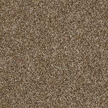 Shaw Floors Compound Honey Bear 00200_SM010