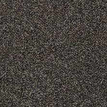 Shaw Floors Compound Black Granite 00503_SM010