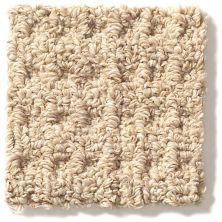 Shaw Floors Copilot Jute 00102_SM013