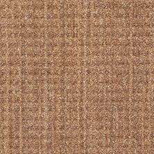 Shaw Floors Copilot Birch 00702_SM013
