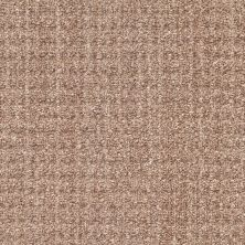 Shaw Floors Copilot Stone 00704_SM013
