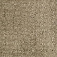 Shaw Floors Candid Llama 00701_SM015