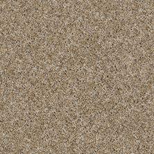 Shaw Floors Caveat Cork 00201_SM016