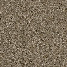 Shaw Floors Caveat Dirt Road 00700_SM016